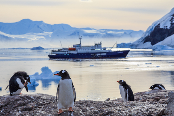 Antarctica | Latin America | Be Inspired | Erne Travel